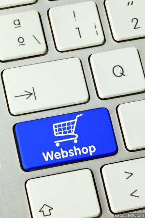 E-commerce marketing za napredne