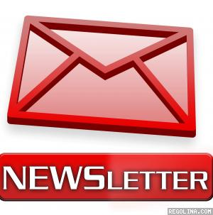 E-mail marketing (newsletter)