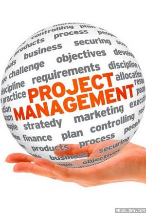 Web project management